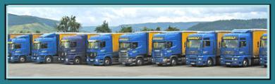 Spedition Gangolf bei Trier – Ihr Profi für Transporte